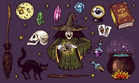 Halloween-Elemente. Magischer Ball, Hexe mit Zauberbuch, verfluchte schwarze Katze, Beldam und Zauberei, Hexe oder Hex, Trank und Kessel, Schädel und Wahrsagerkarten. Hand gezeichnete gravierte Vintage-Skizze.