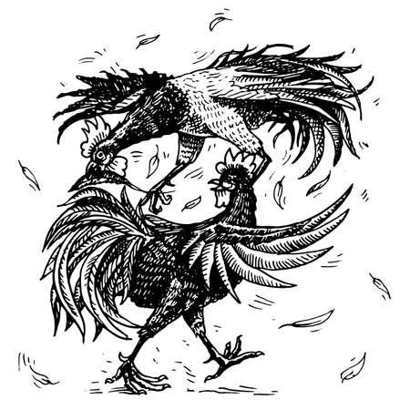 Hahnenkampf oder Gamecocks. Vogelsport auf dem Bauernhof. Hand gezeichnete gravierte Skizze. Haustiere im Vintage-Stil. zwei Hähne auf weißem Hintergrund. Vektorillustration.
