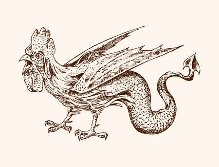 Mythical Basilisk. Ancient Mythology. Bird and animal, creature cock in the old vintage style. Engraved hand drawn old sketch.