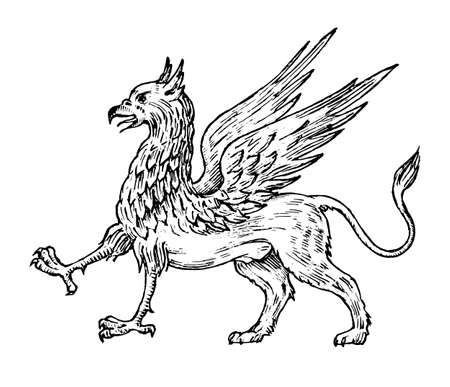 Mythological animals. Mythical antique Griffin. Ancient Birds, fantastic creatures in the old vintage style. Engraved hand drawn old sketch.