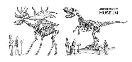 Vintage Archaeological Museum. Visitors are looking at the exhibit. Historical skeleton of an extinct animal dinosaur and Irish elk or giant deer. Engraved hand drawn old monochrome sketch.