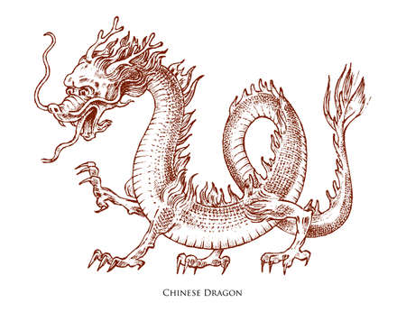 Chinese dragon. Mythological animal or Asian traditional reptile. Symbol for tattoo or label. Engraved hand drawn line art Vintage old monochrome sketch, ink. Vector illustration. Vettoriali