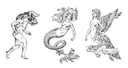Set of Mythological animals. Mermaid Minotaur Harpy Woman Bird. Greek creatures. Engraved hand drawn antique old vintage sketch.