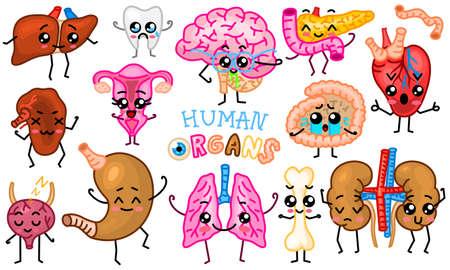 Set of organs. Cute happy human, smiling characters. Vector pins, cartoon kawaii icons. Healthy heart, intestine, pancreas, brain, stomach, liver, bladder uterus organ lungs kidneys gall bladder