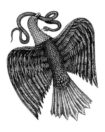 Aquila Symbol of Freedom. An eagle eating a snake. Wild predatory bird. Isolated Vector hand drawn. Vintage template for design. Engraved monochrome sketch.