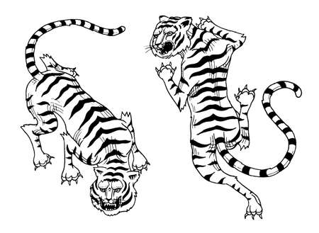 Asian tigers in vintage japanese style for logo. Wild animals cats. Predators from the jungle. Hand drawn Engraved Monochrome Old Sketch for tattoo t-shirt or web site