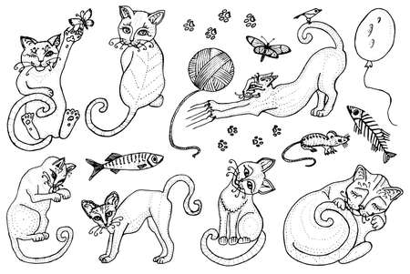 Set of cute cats. Kittens collection. Icons of vector Illustration, line art. Hand drawn Pets. Engraved vintage sketch. Decorative Elements. Fish and food and a ball of yarn