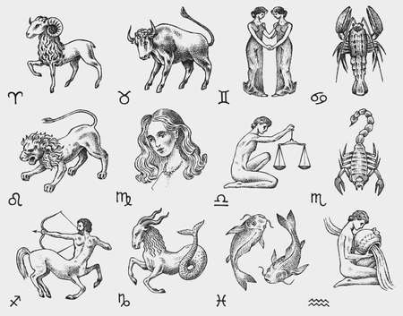 Zodiac icons. Astrology horoscope with signs. Calendar template. Collection outline animals. Vintage style. Libra Scorpio Sagittarius Capricorn Aquarius Pisces. Aries Taurus Gemini Cancer Leo Virgo. Vectores