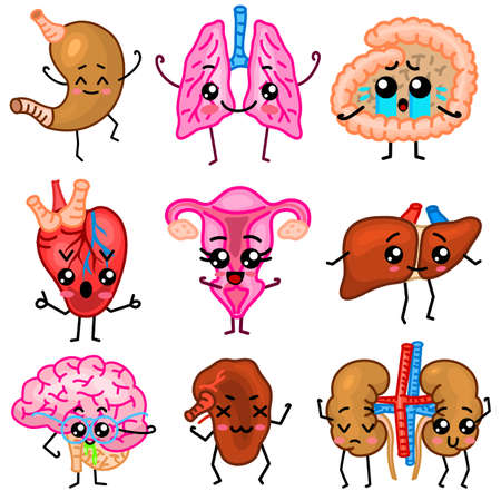 Cute organs. Happy human, Set of smiling characters. Vector pins, cartoon kawaii icons. Healthy heart, stomach, liver, bladder, uterus organ, lungs kidneys gallbladder intestine pancreas brain Stock Vector - 124380617
