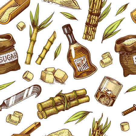 Cane sugar Seamless pattern. Sugarcane plants. Stalks and bottle of rum, Wooden plate spoon, Cubes and juice, Bamboo, signboard inscription. Engraving Hand drawn food and natural ingredients.