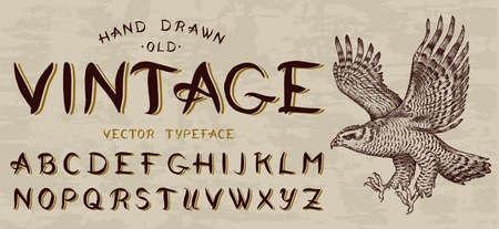 Calligraphic vintage font, Capital letters. Bird eagle, template for emblem and logo. Alphabet on retrobackground. Gothic Symbols types. Outlined version.