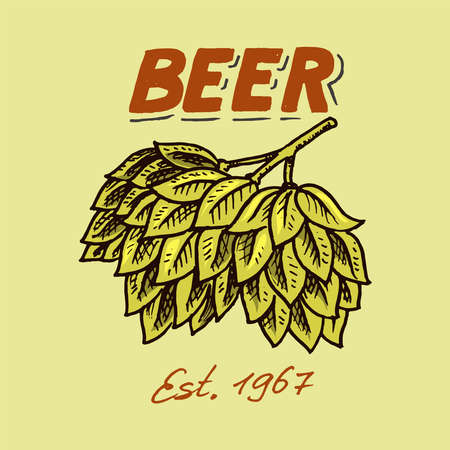 Green Hops for brewing beer. Template emblem or logo for signboard. Poster for web site or book. Engraved hand drawn sketch on a colored background. Vintage Banner with a plant.