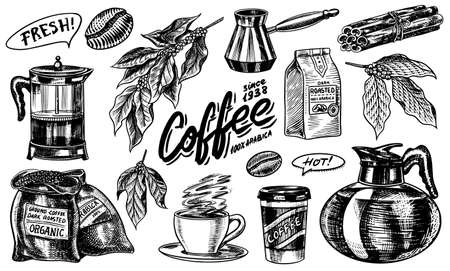 Coffee in vintage style. A bag of grain, cocoa leaves, cinnamon sticks, a cup and a teapot, a coffee maker and a bag of milk, calligraphic inscription. Hand drawn engraved retro sketch for labels