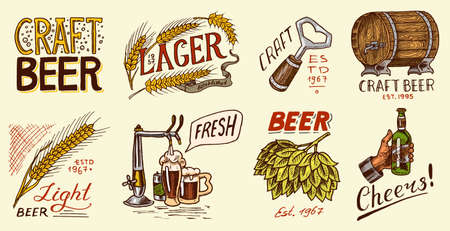 Bottle of beer in hand with the inscription Cheers toast. Rye and wheat. Set of Vintage labels and badges for poster. Hand drawn engraved sketch for pub menu Çizim