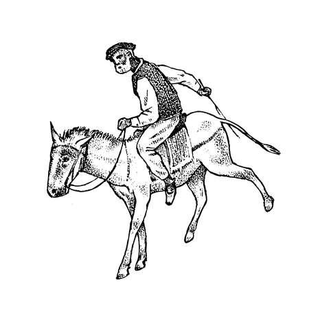 Mann-Reiter in nationaler Kleidung. Griechisch zu Pferd oder Esel. Symbol des antiken Griechenlands. Handgezeichnete gravierte Vintage-Skizze für Poster, Banner oder Website. Vektorgrafik