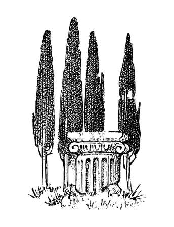 Cypress trees in Greece. Greek style antique column. Hand drawn engraved vintage sketch for poster, banner or website.