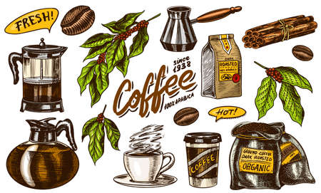 Coffee in vintage style. A bag of grain, cocoa leaves, cinnamon sticks, a cup and a teapot, a coffee maker and a bag of milk, calligraphic inscription. Hand drawn engraved retro sketch for labels. Ilustração