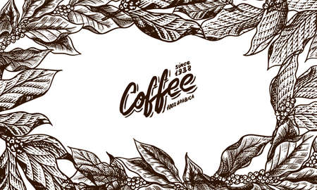 Coffee leaves background in vintage style. Hand drawn engraved poster, retro doodle sketch and calligraphic inscription. Vector Template Banner.