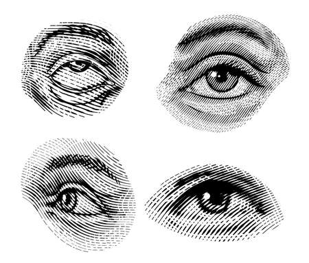Human eyes looks away in vintage style. Female look and eyebrows. Visual System, Sensory Organ Components. Healthy exercise. Hand drawn engraved sketch subject physiology or anatomy. Иллюстрация