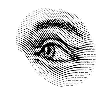 El ojo de los ojos humanos mira hacia otro lado en estilo vintage. Mirada femenina y cejas. Sistema visual, componentes de órganos sensoriales. Ejercicio saludable. Fisiología o anatomía del sujeto boceto grabado dibujado a mano.