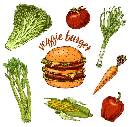Vegan Vegetable Burger. Sandwich Ingredients. Salad and tomato, carrots and peppers, corn and celery. Illustration for organic shop. Hand drawn sketch in vintage style