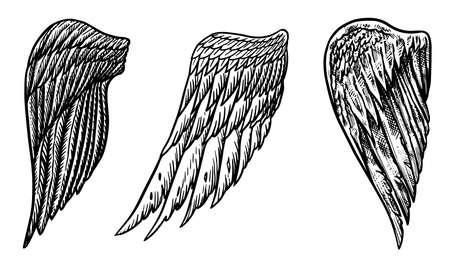 Set of Angel wings in vintage style. Template for tattoo and emblems, t-shirts and logo. Emblem for stickers. Engraved sketch. Vector illustration.