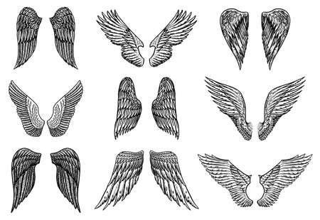 Set of Angel wings in vintage style. Template for tattoo and emblems, t-shirts and logo. Emblem for stickers. Engraved sketch. Vector illustration. Çizim
