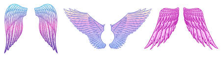 Angel wings in vintage style. Template for tattoo and emblems, t-shirts and logo. Colorful emblem for stickers. Engraved sketch. Vector illustration.