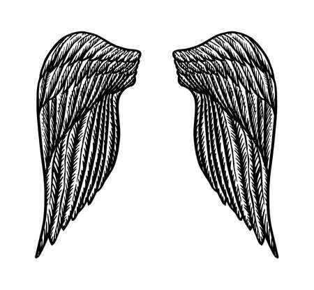 Angel wing in vintage style. Template for tattoo and emblems, t-shirts and logo. Emblem for stickers. Engraved sketch. Vector illustration.