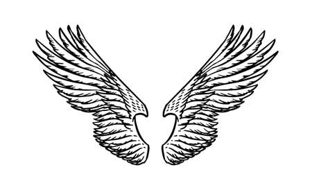 Angel wing in vintage style. Template for tattoo and emblems, t-shirts and logo. Emblem for stickers. Engraved sketch. Vector illustration. Archivio Fotografico - 130893690