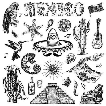 Mexico set in vintage style. Traditional national costume on a woman, animals, plants and musical instruments. Engraved hand drawn sketch. Stock Illustratie