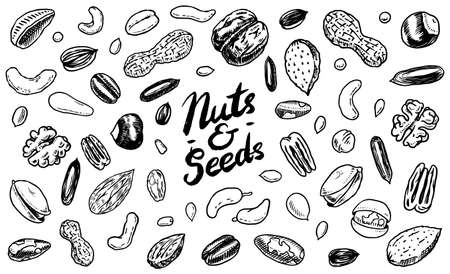 Nuts mix background. Seeds and granule, corn and grain. Hazelnut, Walnut, Almonds. Food concept. Top view. Vintage poster. Engraved hand drawn sketch. Set of doodle icons, signs in Monochrome style Archivio Fotografico - 135556869