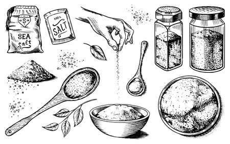 Juego de sal marina. Botellas de vidrio, envases y hojas, cucharas de madera, polvo en polvo, especias en la mano. Cartel de fondo vintage. Boceto dibujado a mano grabado.