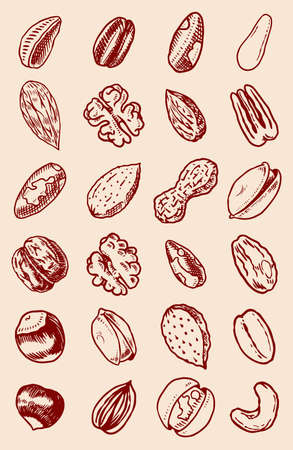 Nuts mix background. Seeds and granule, corn and grain. Hazelnut, Walnut, Almonds. Food concept. Top view. Vintage poster. Engraved hand drawn sketch. Set of doodle icons, signs in Monochrome style. Archivio Fotografico - 136957691
