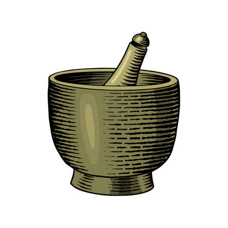 Bowl of Black pepper in Vintage style. Mortar and pestle. Mill and Dried seeds, a bunch of spices. Allspice or peppercorn. Herbal seasoning. Engraved hand drawn vector sketch for background