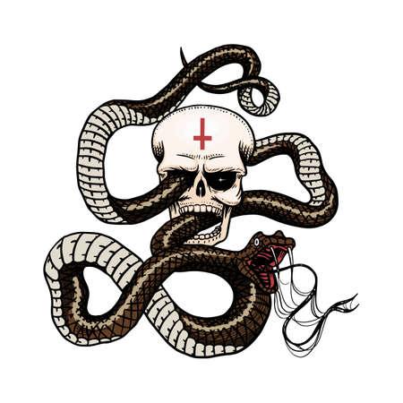 Serpente con teschio in stile Vintage. Serpente cobra o pitone o vipera velenosa. Vecchio schizzo di rettile disegnato a mano inciso per Tattoo. Anaconda per adesivo o magliette.