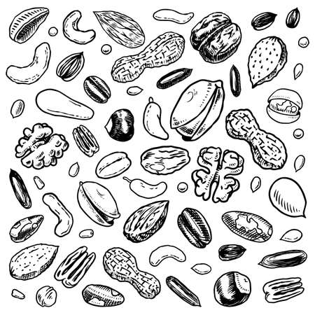 Nuts mix background. Seeds and granule, corn and grain. Hazelnut, Walnut, Almonds. Food concept. Top view. Vintage poster. Engraved hand drawn sketch. Set of doodle icons, signs in Monochrome style. Archivio Fotografico - 137460722