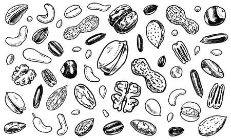 Nuts mix background. Seeds and granule, corn and grain. Hazelnut, Walnut, Almonds. Food concept. Top view. Vintage poster. Engraved hand drawn sketch. Set of doodle icons, signs in Monochrome style. Archivio Fotografico - 137460954