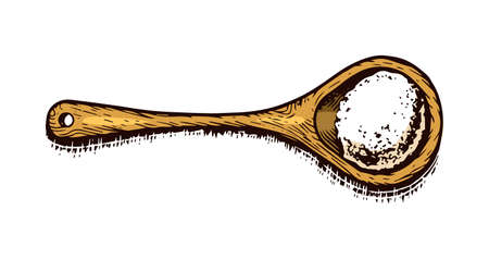 Wooden spoon with Sea salt. Powdered powder and bunch of seeds. Vintage background poster. Engraved hand drawn sketch