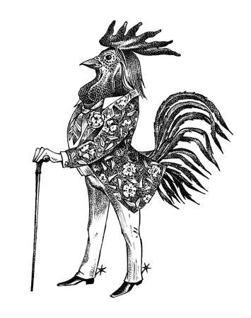A rooster man with a cane and boots in a cowboy style. Hand drawn fashionable cockerel. Engraved old monochrome sketch