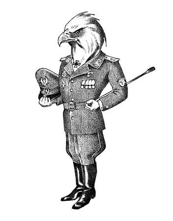 White-headed eagle man in military uniform. Hand drawn fashionable cockerel. Engraved old monochrome sketch. Mythical fictional creature in hipster style.
