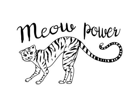 Striped kitty cat. Meow power. Cute pet. Hand drawn engraved sketch for label or banner or t-shirt. Vector illustration in outline vintage doodle style.