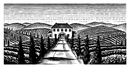 Scenic view of vineyards. Wide panoramic vine plantation in Chianti. French or Italian engraved landscape. Fields and hills of Tuscany. Hand drawn monochrome vintage horizontal sketch.
