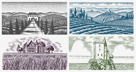 Vineyards Set. Vine plantation for bottle labels. Scenic view of French or Italian engraved landscape. Mountains Rural Fields Wheat Hills Hand drawn vintage sketch for alcohol, whiskey beer poster.