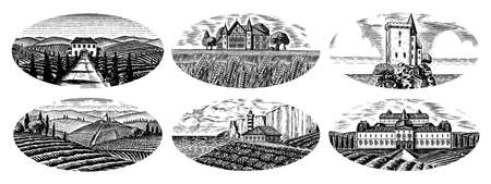 Vineyards Set. Vine plantation for bottle labels. Scenic view of French or Italian engraved landscape. Mountains Rural Fields Wheat Hills. Hand drawn vintage sketch for alcohol, whiskey beer poster. Banque d'images - 139458263