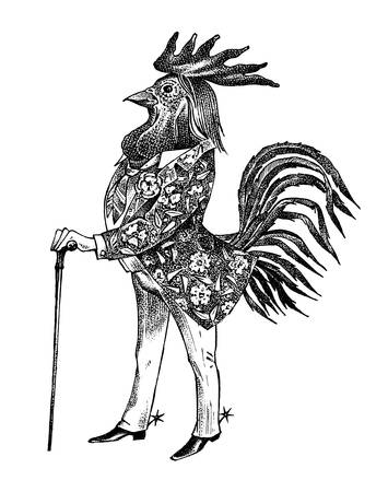 A rooster man with a cane and boots in a cowboy style. Hand drawn fashionable cockerel. Engraved old monochrome sketch.