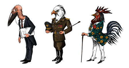 Bird man, Bald eagle and marabou head in military uniform. Dressed Rooster or Cock cowboy. Hand drawn fashionable cockerel. Engraved old monochrome sketch. Mythical fashion creature in hipster style.  イラスト・ベクター素材