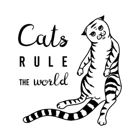 Cats rule the world Meow power. Domestic kitty. lettering quote or phrase. Hand drawn engraved sketch for banner or t-shirt. Monochrome Vector illustration in outline vintage doodle style