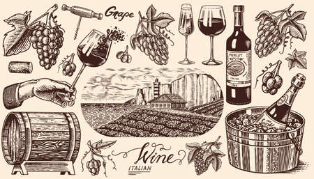 Vineyard and Wine Set. Ice bucket, Corkscrew Cork Grapes, wooden barrel. Sparkling champagne, bottle and glass Cheers. Vine labels. Hand drawn Engraved vintage sketch for poster, restaurant menu.