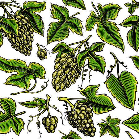 Grape Seamless pattern. Green Berry leaves background. Table fruit in vintage style. Hand drawn engraved outline sketch for banner, poster or label. Ingredient for wine and juice.